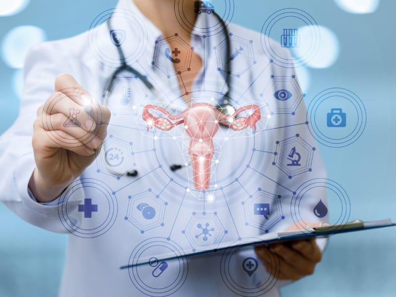 子宮 内 膜 炎